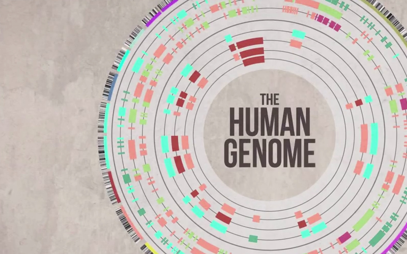 a description of the human genome project At a glance • the human genome – salient features of human genome • what was human genome project(hgp)  description visibility .
