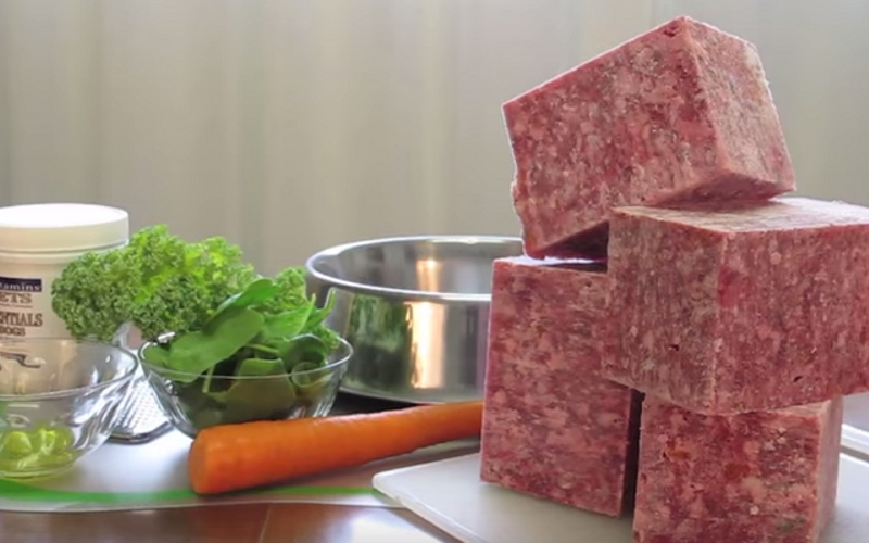 Raw Diet Food List For Dogs