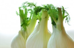 Fennel Seeds Pros and Cons List